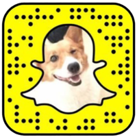 Snapchat Codes, Usernames, and Tips and Tricks