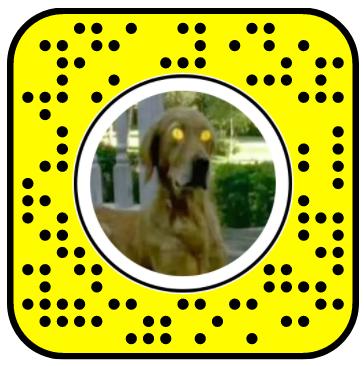Goosebumps Freeze Frame Snapchat Lens
