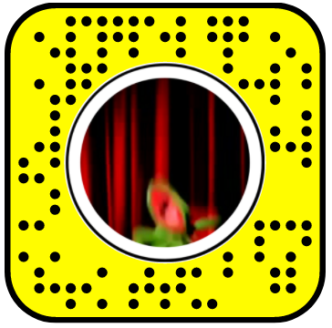 Kermit Seizure Snapchat Lens